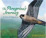 The Peregrine's Journey: A Story of Migration book cover